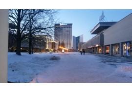 Снег в городе Вильнюс