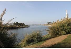 Устье реки Яркон