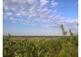 Окрестности озера Иртяш