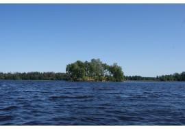 Речной остров