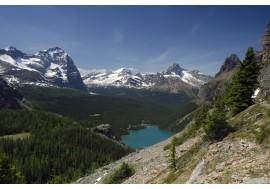 Горы лес озеро
